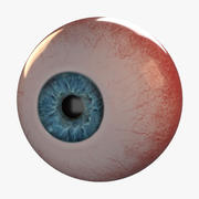Photorealistic human eye_animated 3d model