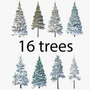 针叶树雪覆盖包 3d model