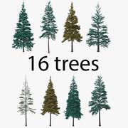 Pakiet drzew iglastych 3d model