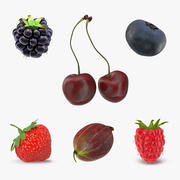 Berries Collection 3d model