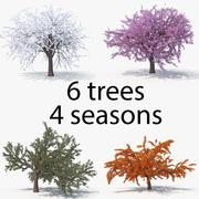 Cherry All Seasons Pack 3d model