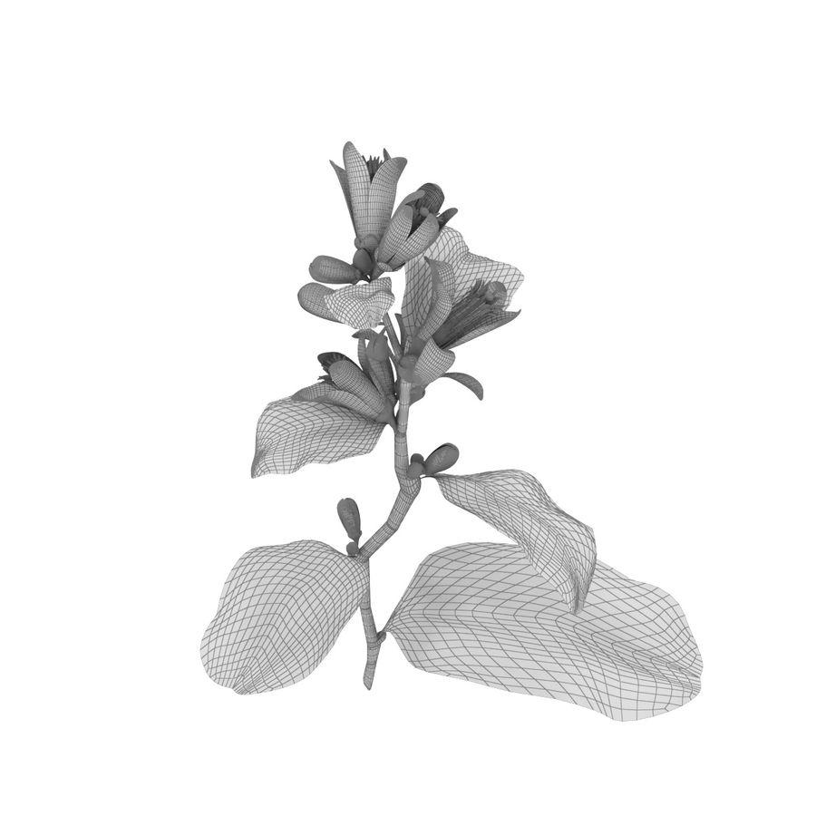Citrus orange flower royalty-free 3d model - Preview no. 6