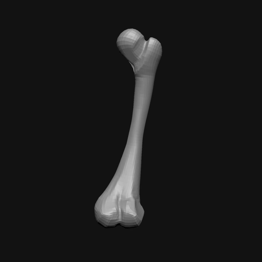 Stylised Bones royalty-free 3d model - Preview no. 12