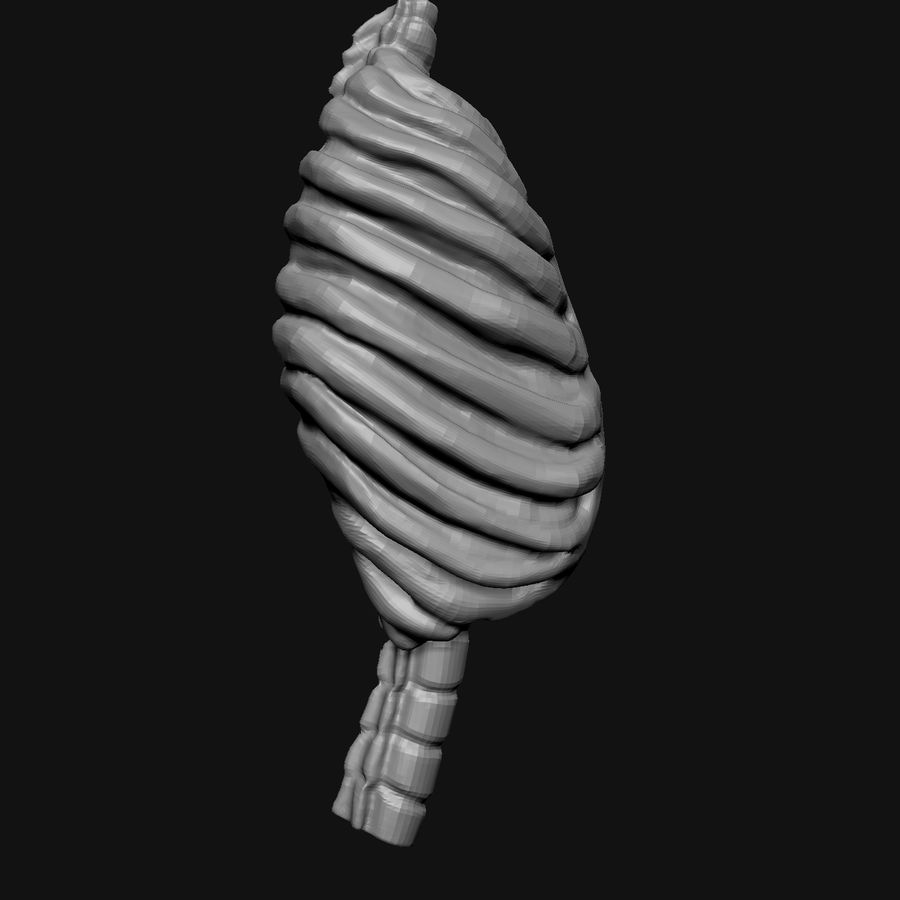 Stylised Bones royalty-free 3d model - Preview no. 10