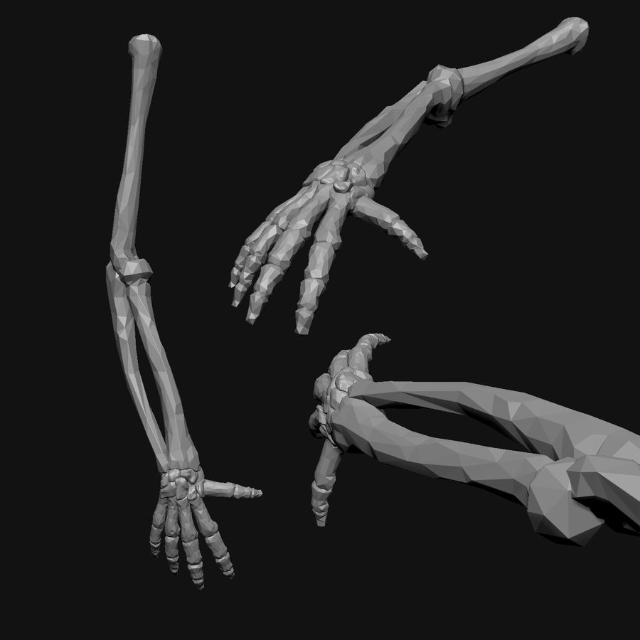 Stylised Bones royalty-free 3d model - Preview no. 13