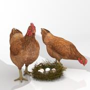 Цыпленок в гнезде с яйцами 3d model