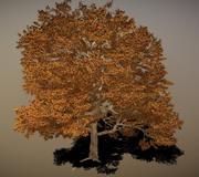 緑の灰の木 3d model
