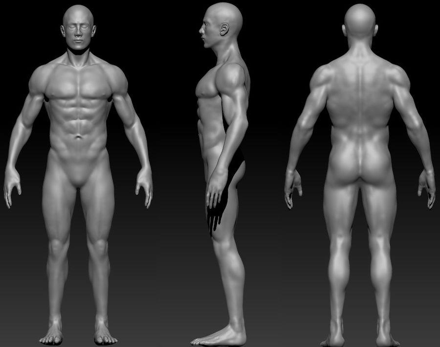 クリーンなトポロジーの人間男性ベースメッシュ3D royalty-free 3d model - Preview no. 1