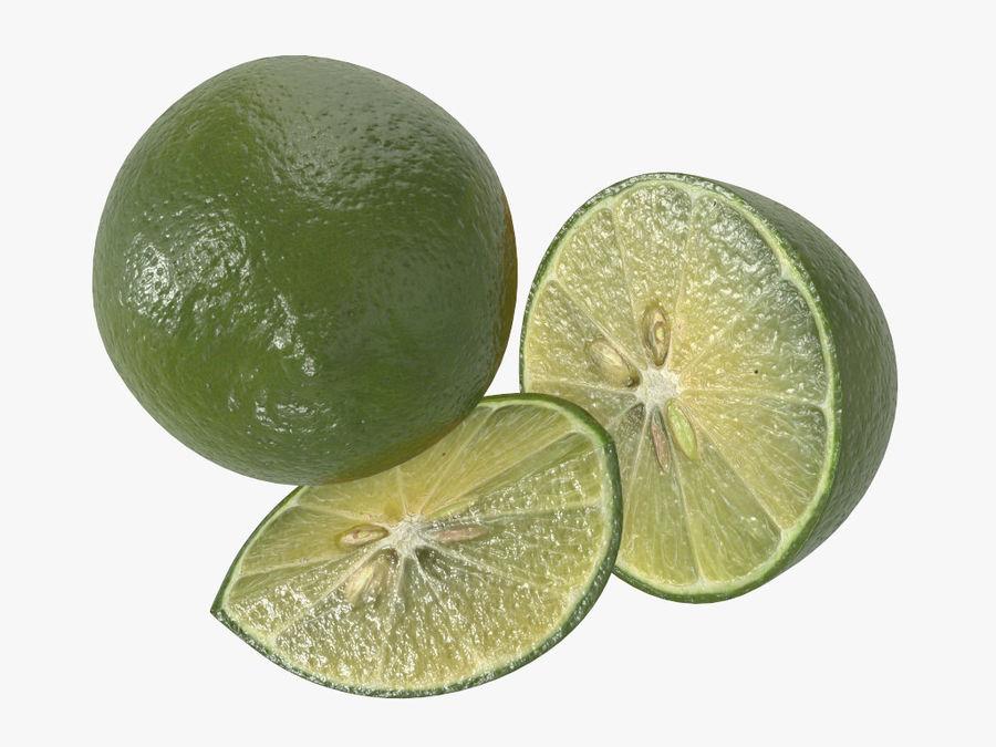 citrus limoen fruit royalty-free 3d model - Preview no. 6