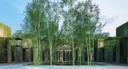 bambus 4 3d model