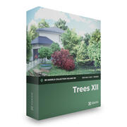 Trees 3D Models Collection V-Ray 3d model