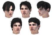 Set poils mâles 30 espèces 3d model