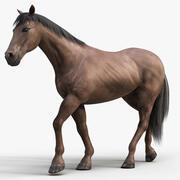 Horse PRO (mörkbrun) 3d model