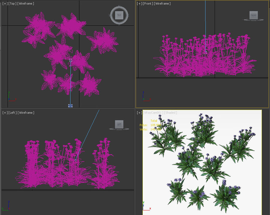 8 field scabious set royalty-free 3d model - Preview no. 14