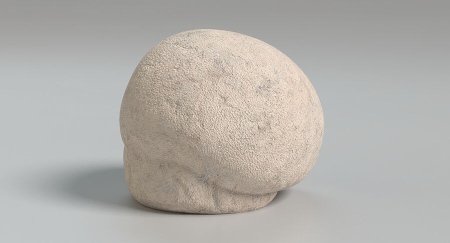Puffball-Pilz royalty-free 3d model - Preview no. 7