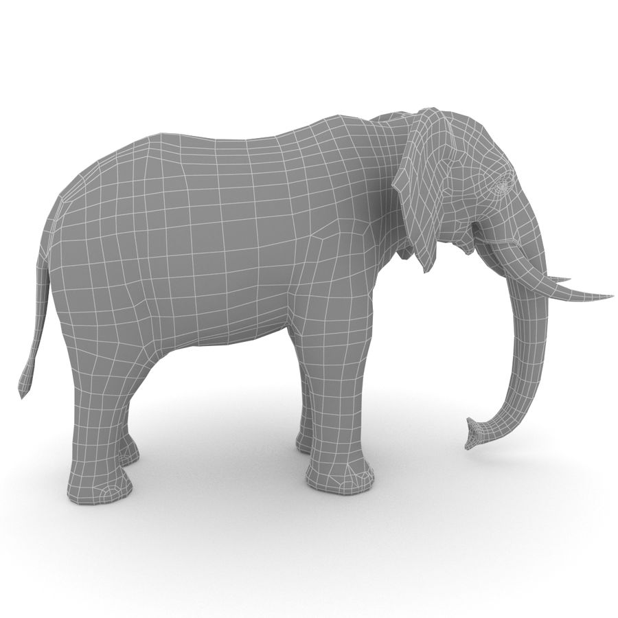 African Elephant royalty-free 3d model - Preview no. 6