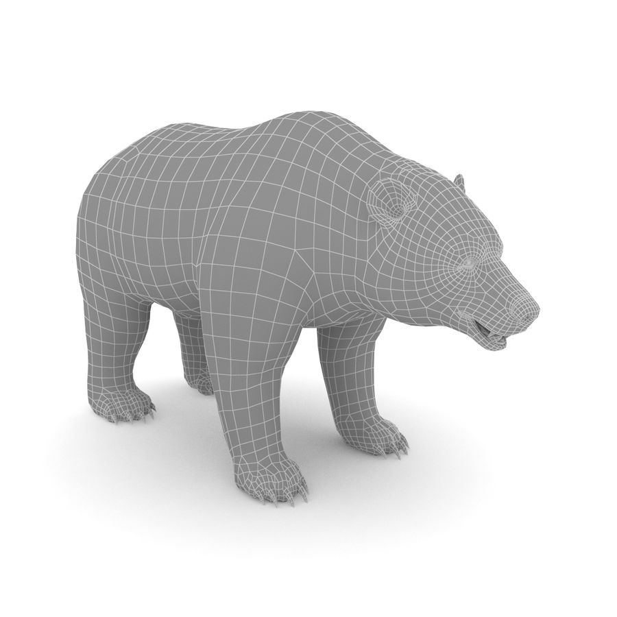 Urso preto royalty-free 3d model - Preview no. 5