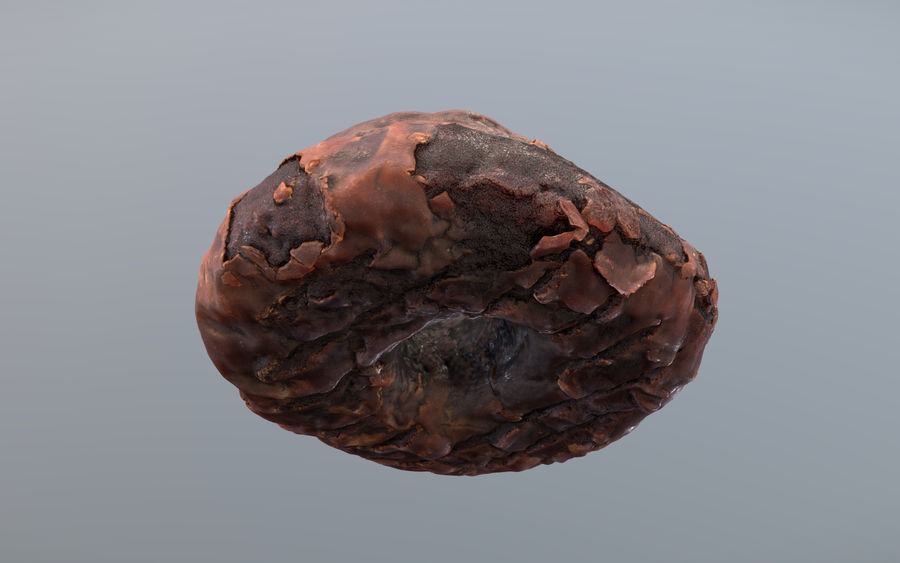 Doughnut Plant Chocolate Donut royalty-free 3d model - Preview no. 5