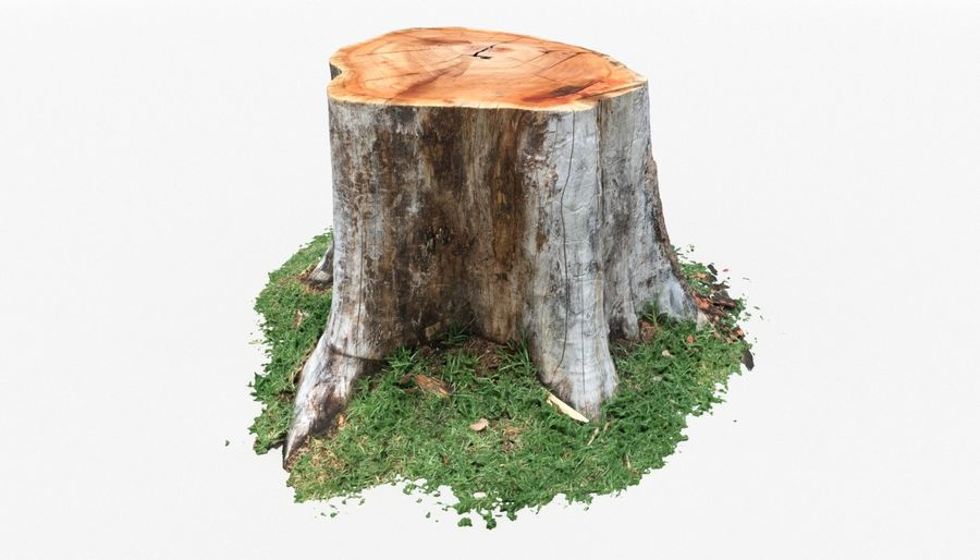 Ağaç kütüğü royalty-free 3d model - Preview no. 2