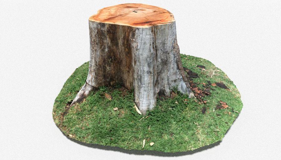 Ağaç kütüğü royalty-free 3d model - Preview no. 1