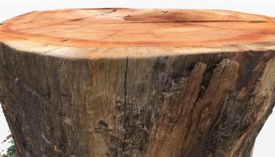 Ağaç kütüğü royalty-free 3d model - Preview no. 10