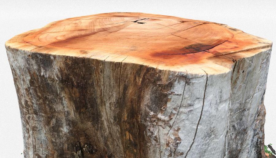 Ağaç kütüğü royalty-free 3d model - Preview no. 3