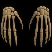 kość szkieletowa anatomii ręki 3d model