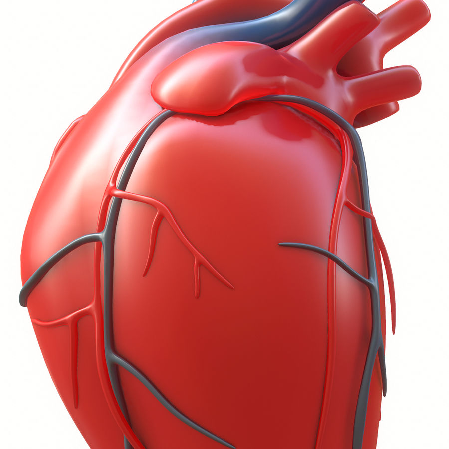Ludzkie serce royalty-free 3d model - Preview no. 9