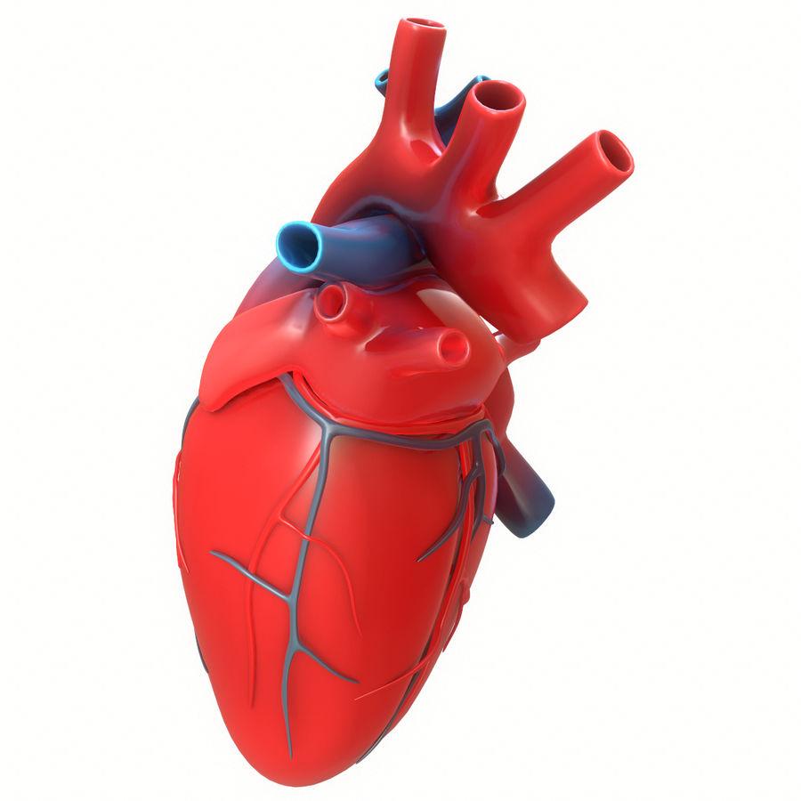 Ludzkie serce royalty-free 3d model - Preview no. 3