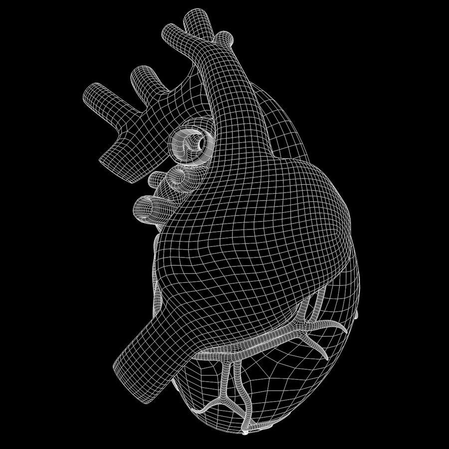 Ludzkie serce royalty-free 3d model - Preview no. 19