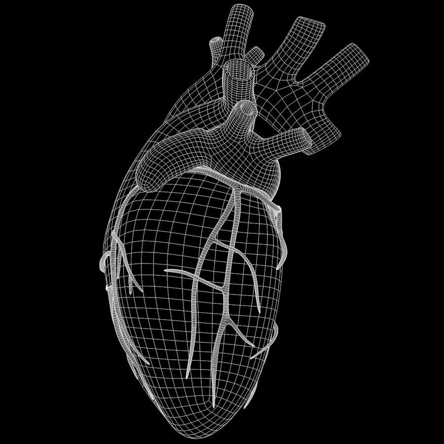 Ludzkie serce royalty-free 3d model - Preview no. 21