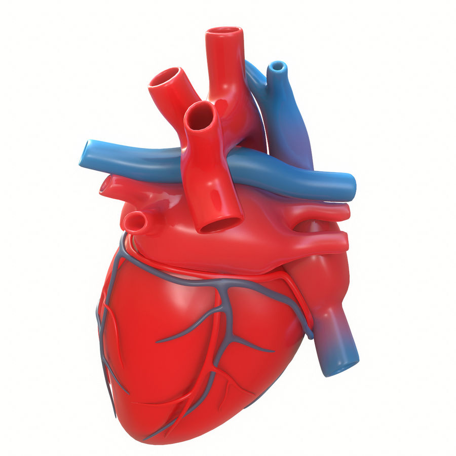 Ludzkie serce royalty-free 3d model - Preview no. 4
