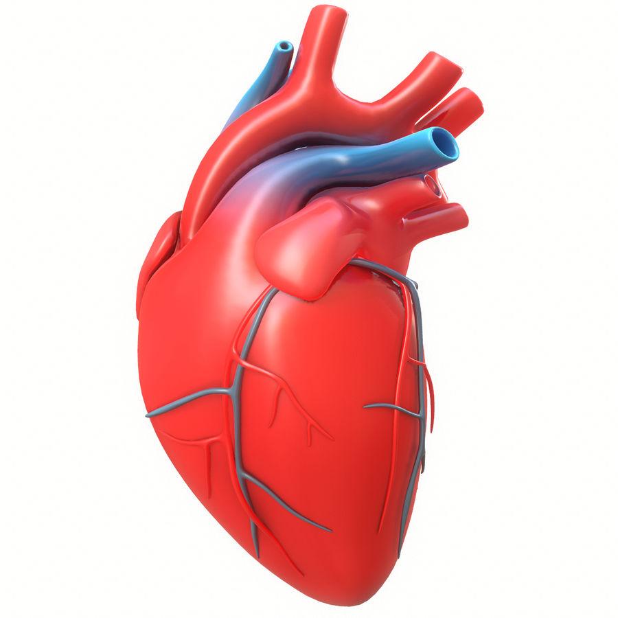 Ludzkie serce royalty-free 3d model - Preview no. 12