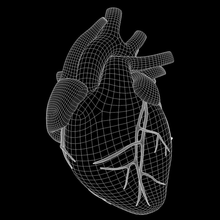 Ludzkie serce royalty-free 3d model - Preview no. 18