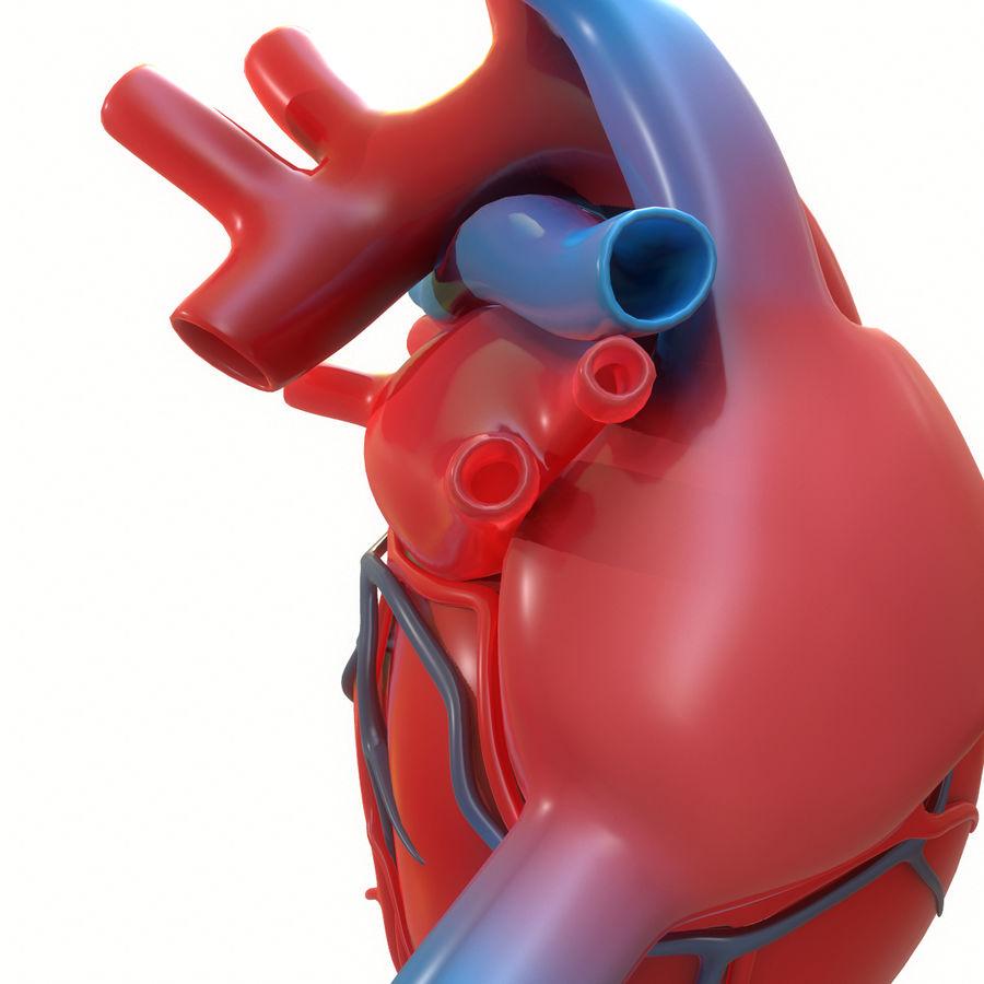 Ludzkie serce royalty-free 3d model - Preview no. 17