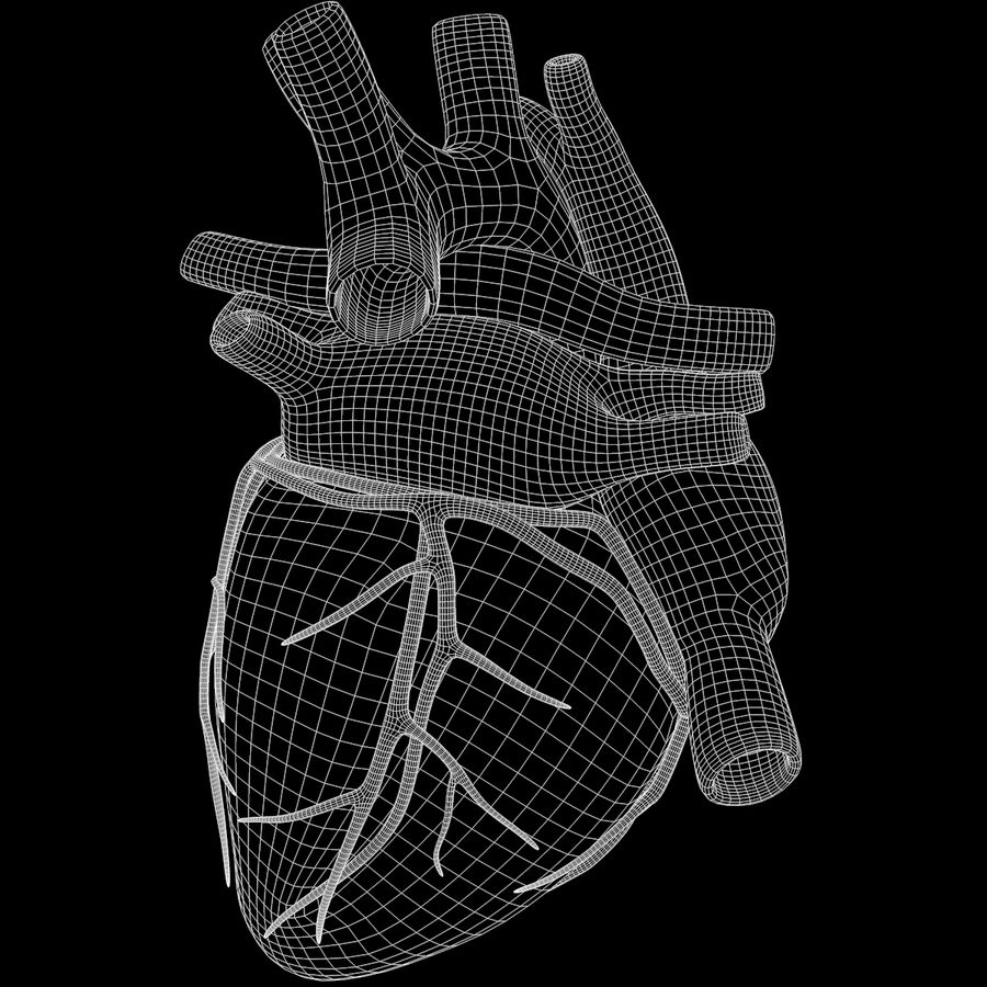 Ludzkie serce royalty-free 3d model - Preview no. 20