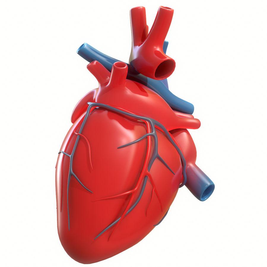Ludzkie serce royalty-free 3d model - Preview no. 11