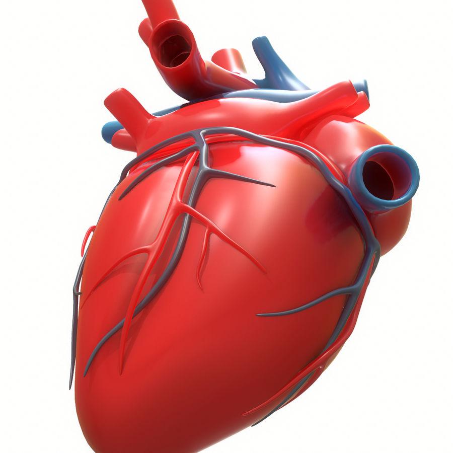 Ludzkie serce royalty-free 3d model - Preview no. 10