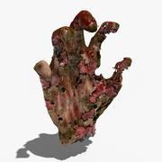 Infected Hand 3d model