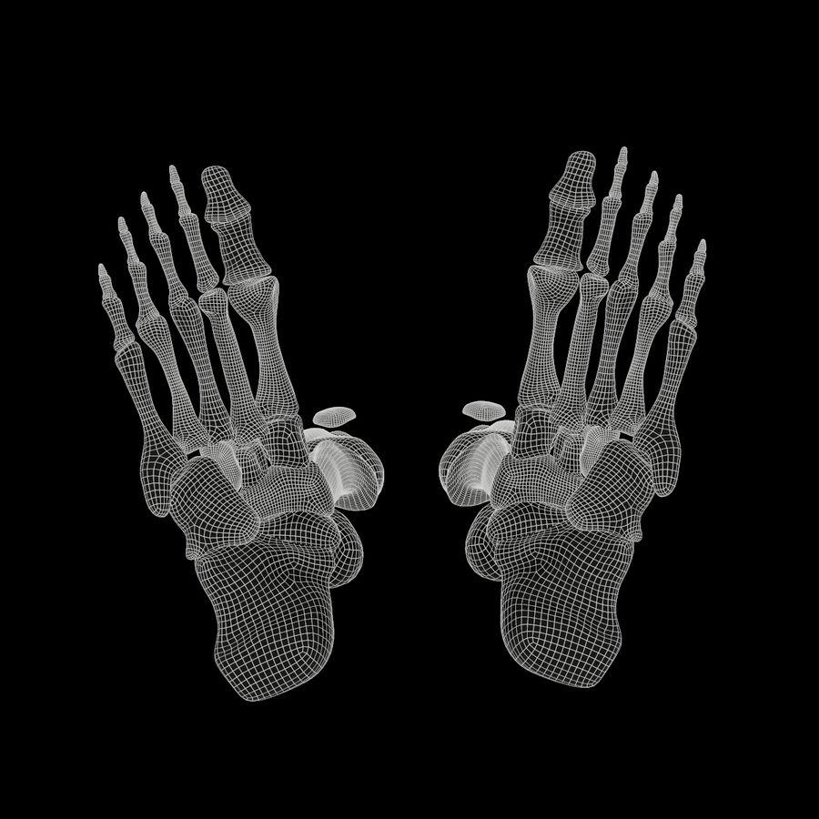 Anatomi Ben Fotben royalty-free 3d model - Preview no. 19