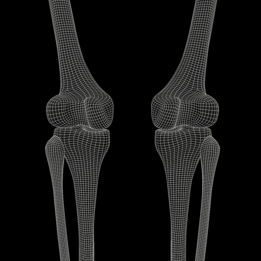 Anatomi Ben Fotben royalty-free 3d model - Preview no. 17