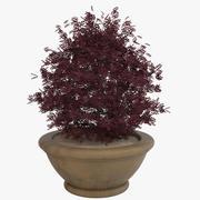Deco Pot 210 3d model