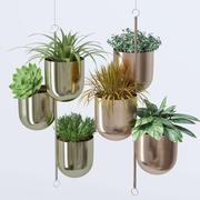House plant indoor plant hanging metal pots 3d model