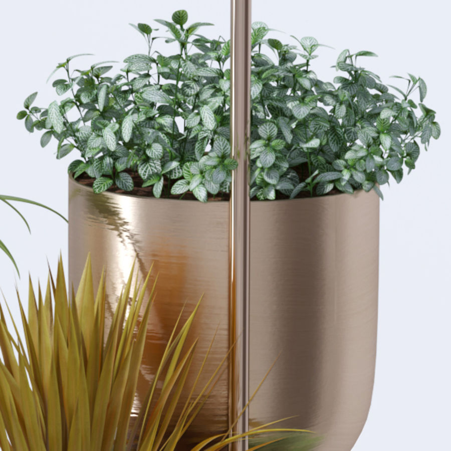 House plant indoor plant hanging metal pots royalty-free 3d model - Preview no. 9