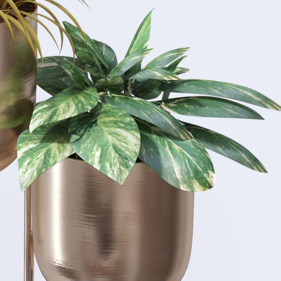 House plant indoor plant hanging metal pots royalty-free 3d model - Preview no. 10