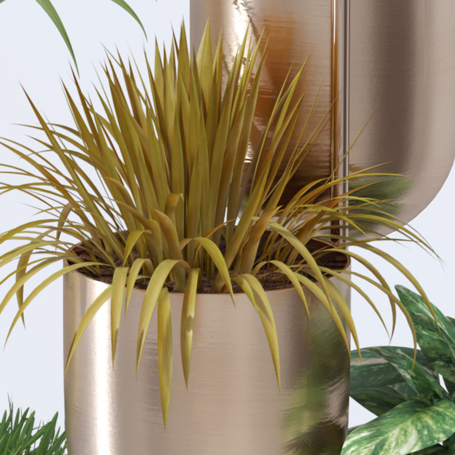 House plant indoor plant hanging metal pots royalty-free 3d model - Preview no. 8