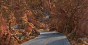 Rock Desert Road 3d model