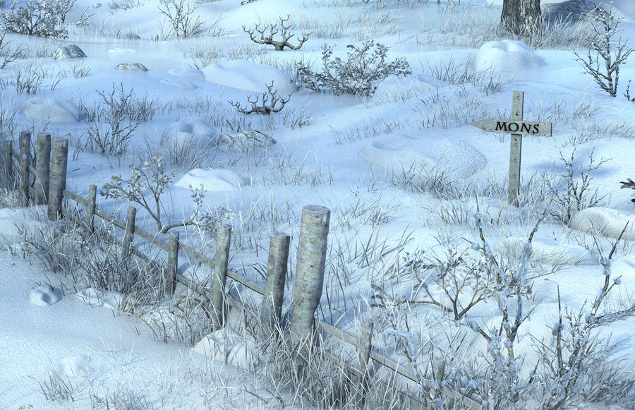 Snow House Environment royalty-free 3d model - Preview no. 5