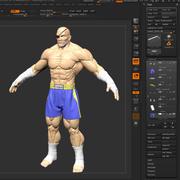 Sagat Full Project 3d model