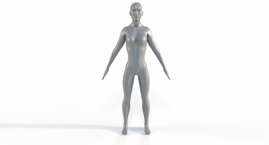 Female Base Mesh royalty-free 3d model - Preview no. 26